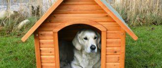 Как выбрать будку или вольер для собак
